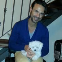 Dog sitting soggiorno di Daniele