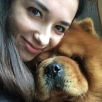 Dog sitting soggiorno di Simona