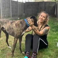 Alessandra's dog day care