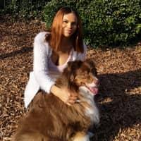 Shanice's dog day care