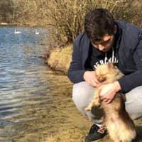 L'hébergement pour chien de Florian